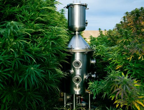 CBD and Hemp Extraction Methods : Ethanol vs. CO2
