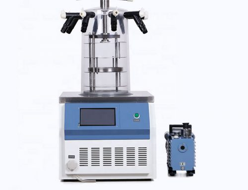 Lab Small Freeze Drying Machine Lyophilizer