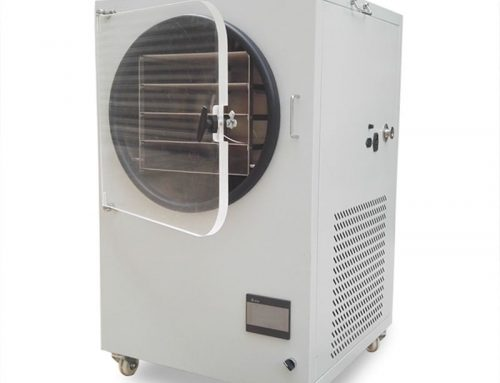 Cheap price small freeze dryer