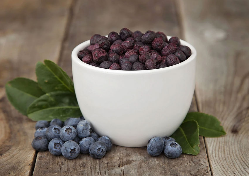 freeze-drying-blueberries