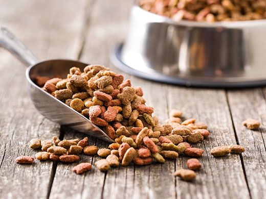 freeze-drying-application in pet food