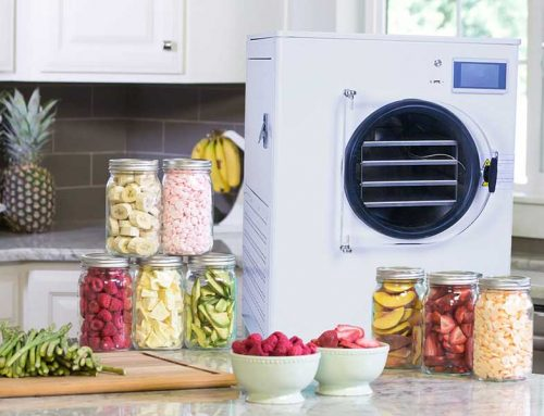 Food Freeze Dryer Machine : The Complete Guide