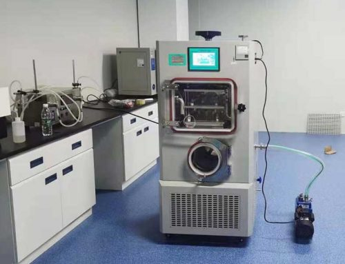 Freeze Drying / Lyophilization: The Ultimate Guide